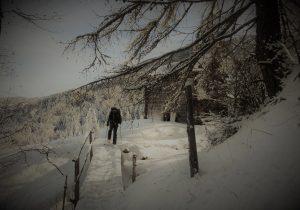 Traumhafte Schneschuhtrails