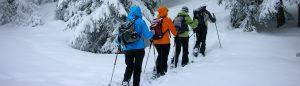 Geführte Schneeschh Touren